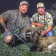 Mouflon at Agua Vida Ranch